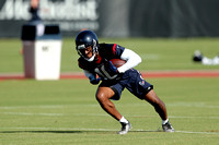 Houston Texans Training Camp -- Aug. 1