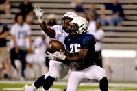 Rice Spring Football Game -- April 8